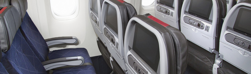 Basic Economy Travel Information American Airlines